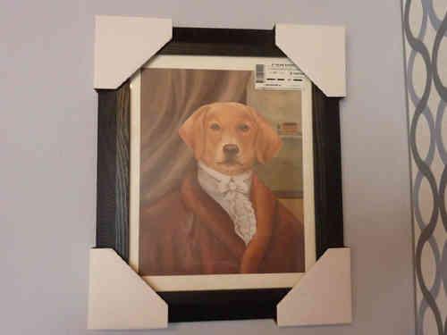 Foto Hundemotiv Rahmen