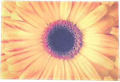 Mars & More Fußabtreter Blume gelb Küchenmatte