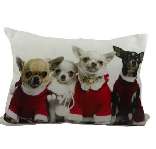 Kissen Chihuahuas