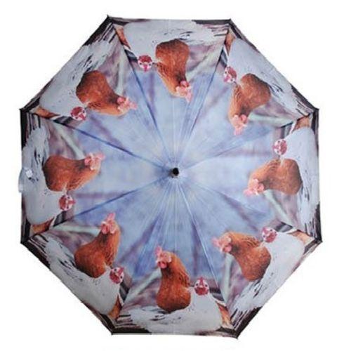 Stockschirm Hühner